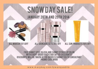 Snow Day Sale